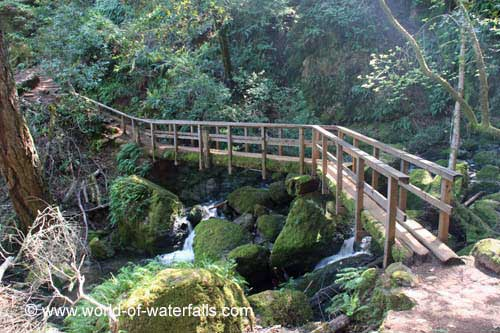 Cataract Loop Trail Best Hikes in Marin County